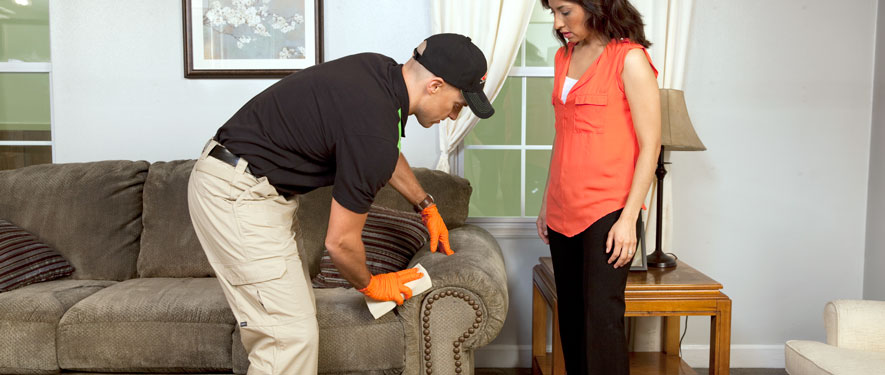 Maryville, TN carpet upholstery cleaning